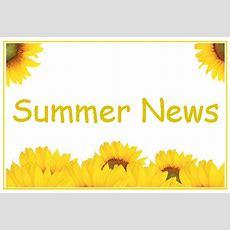 Summer News Update! Mindingkids