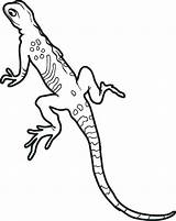 Coloring Lizard Gecko Pages Lizards Printable Leopard Realistic Colouring Frogs Geckos Bad Sheets Lineart Snakes Print Adult Getcolorings Getcoloringpages Reptile sketch template