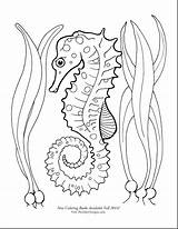 Seahorse Coloring Pages Seahorses Drawing Cute Sea Horse Printable Draw Adult Google Books Print Theinkyoctopus Getdrawings Starfish Tattoo sketch template