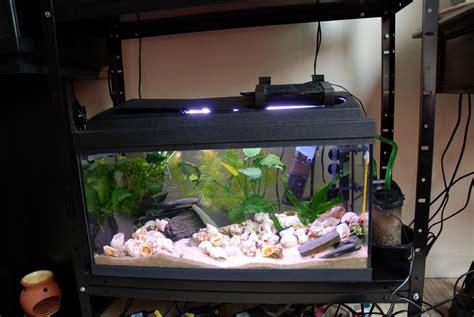 eclairage led aquarium pas cher eclairage aux leds simple et pas cher partie 2 modification de la galerie d un 54 litres tanganyika