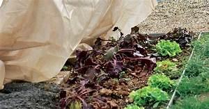 Tipps Für Den Garten : 7 winterschutz tipps f r den sp twinter mein sch ner garten ~ Markanthonyermac.com Haus und Dekorationen