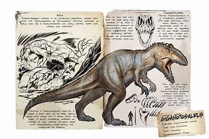 Ark Giganotosaurus Giga Survival Evolved Dossier Ragnarok