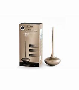 Diffuseur De Parfum Voiture : diffuseur de parfum art design platinium ~ Teatrodelosmanantiales.com Idées de Décoration