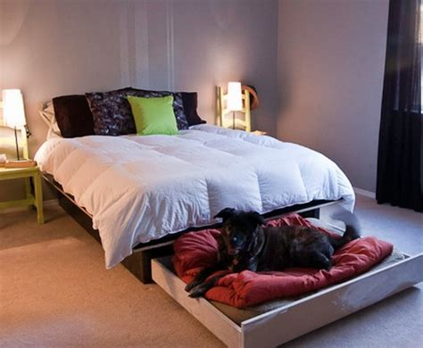diy platform bed   roll  dog bed homestead