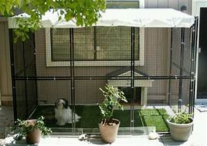 dog run with doggy door to house for the home pinterest With outdoor dog kennel attached to house