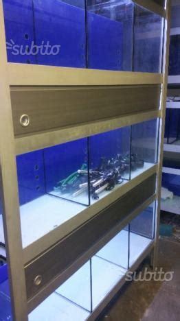 Arredamenti Per Acquari Batteria Acquari Per Negozio Arredamento Per Posot Class