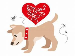Dog Diagram Stock Illustrations  U2013 370 Dog Diagram Stock