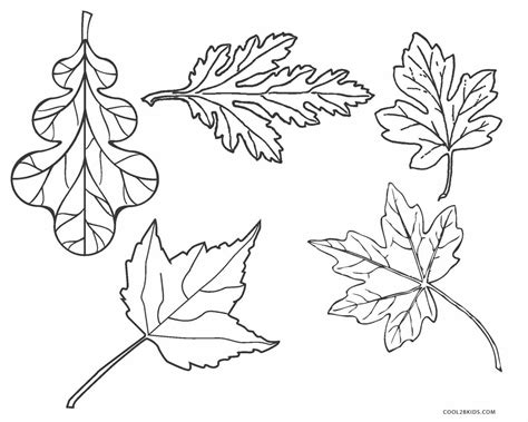 Coloring Leaf by Free Printable Leaf Coloring Pages For Cool2bkids