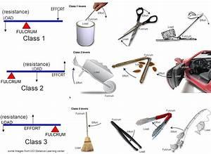 Torque - Rotatational Equilibrium