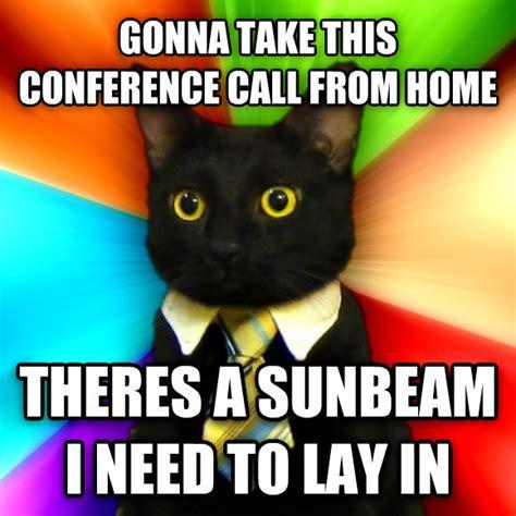 Conference Call Meme - livememe com business cat