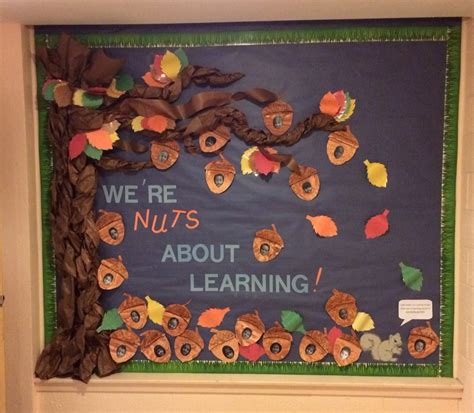 10 unique fall bulletin board ideas preschool 795 | fall bulletin board were nuts about learning bulletin boards