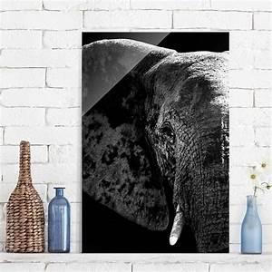 Glasbild Schwarz Weiß : glasbild afrikanischer elefant schwarz weiss hoch 3 2 ~ A.2002-acura-tl-radio.info Haus und Dekorationen