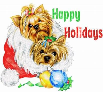 Happy Holidays Christmas Greetings Yorkie Holiday Dog