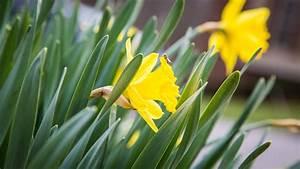 It's spring! Let's talk smart outdoor tech - CNET