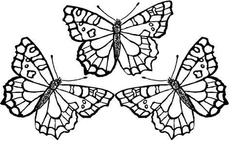 butterfly coloring pages butterfly coloring pages bestofcoloring