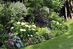Schattengarten dapoz gartengestaltung for Garten planen mit kletterpflanze balkon schatten