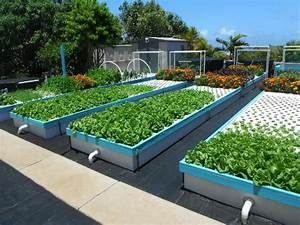 Commercial Aquaponics Systems Image Gallery