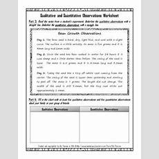 Qualitative And Quantitative Observations Worksheet By Elly Thorsen
