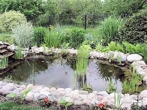Bassin De Jardin Dfinition Illustre