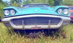 Junkyard Jems - Americana: 1961 Thunderbird, New Yorker, Mustangs and Rusty Tractors?