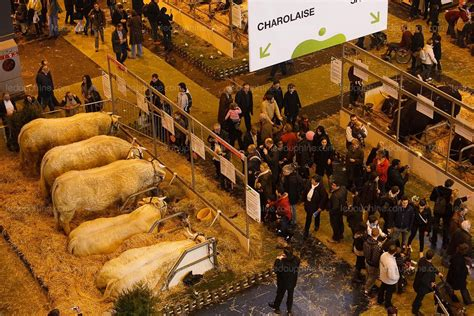chambre agriculture isere bourgoin jallieu la grande transhumance