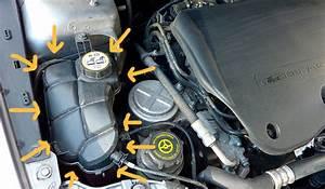 Mettre Du Liquide De Refroidissement : comment v rifier les niveaux de sa voiture ~ Medecine-chirurgie-esthetiques.com Avis de Voitures