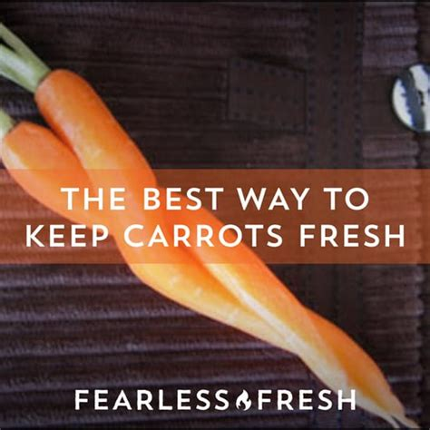 Best Way To Keep Carrots Fresh  Fearless Fresh