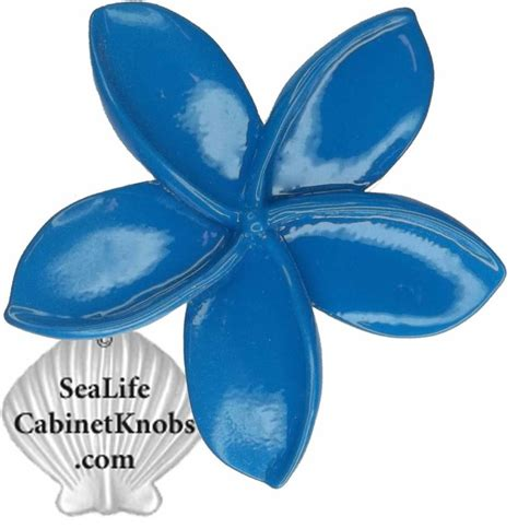 sea life cabinet knobs plumeria cabinet knobs tropical kitchen orlando by