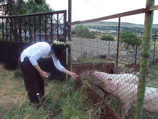 Kaukāza gūstekne 2: jūnijs 2010