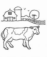 Coloring Pages Herd Cows Horses sketch template
