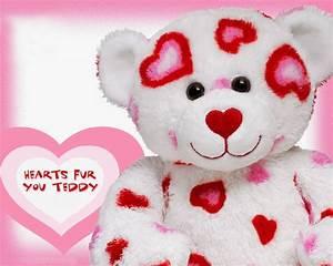Teddy Bear HD Wallpaper - Wallpapers