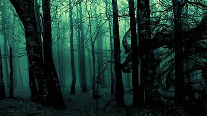 Forest Spooky Dark Desktop Backgrounds Background Wallpapers