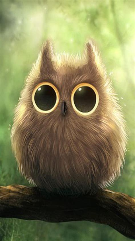 hd cute owl wallpaper  android pixelstalknet