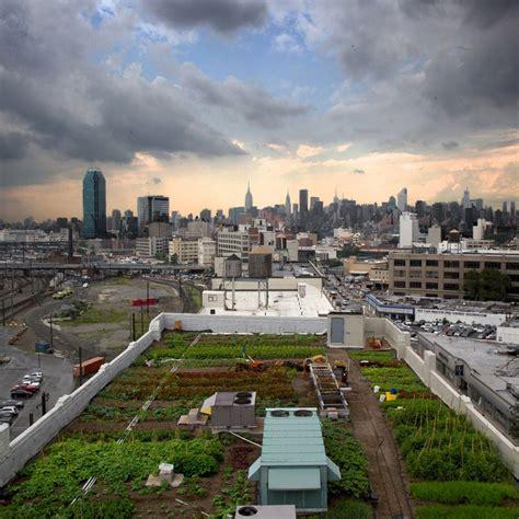 Urban Farming - Cool Hunting
