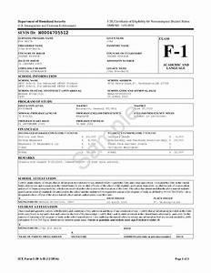 SEVIS and Form I-20 – International Student Immigration