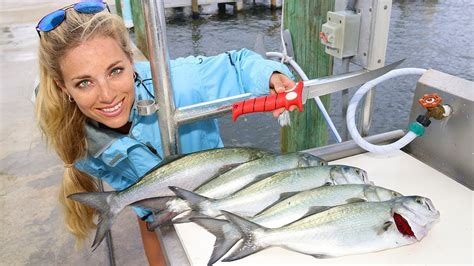 florida fishing darcizzle catch bluefish inshore clean cook offshore thursday start right
