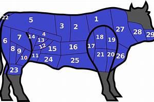 By The Numbers: UB Bulls vs Western Michigan Broncos ...