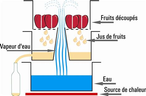 comment cuisiner le foie gras extracteur de jus à vapeur 26 cm induction tom press