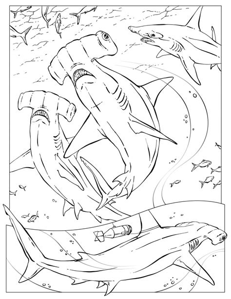 coloring pages wildlife research conservation