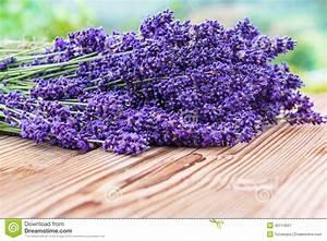 Kalkanstrich Auf Holz : lavendel auf holz stockbild bild von flieder leicht 42174501 ~ Markanthonyermac.com Haus und Dekorationen