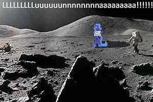 The true reason behind the moon landing by wingdune41 on ...