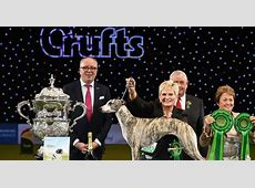 Crufts 2018 Best in Show final results plus all the