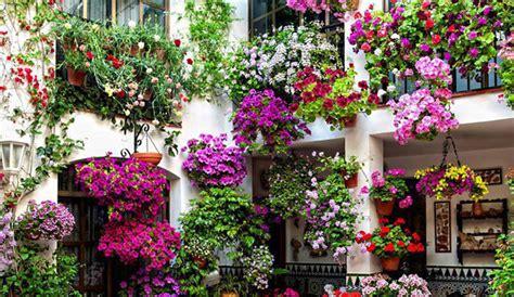 terrazze in fiore festeggiamo la primavera scoprendo i migliori fiori per