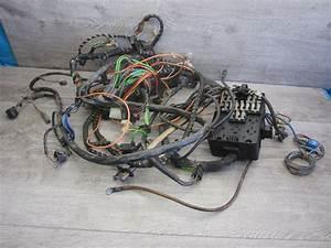 Wiring Harnes Fuse Box