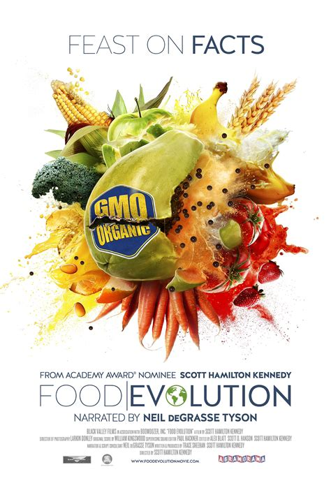 cuisine as media downloads food evolution