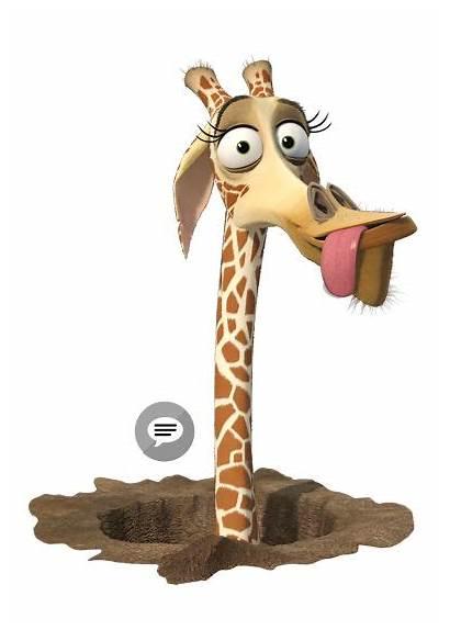 Madagascar Melman Cartoon Giraffe Characters Mr Dreamworks