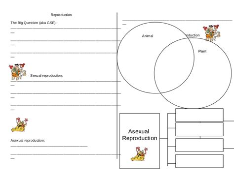 printables asexual vs sexual reproduction worksheet