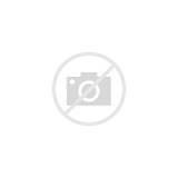 Flower Columbine Outline Coloring Bud Perennial Leaf sketch template