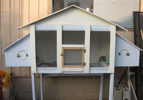 quail aaronsworldcom