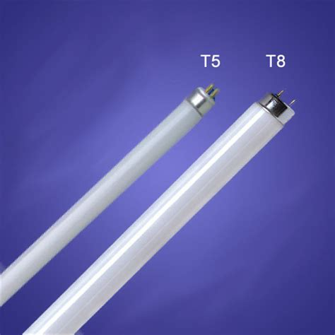 difference between t5 and t8 lighting in fish tank aquariums tropical fish site